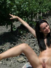 Femjoy's Olivia in Vineyard