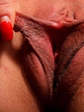 Pussy lips close-up